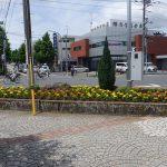 駅前花壇の植替え